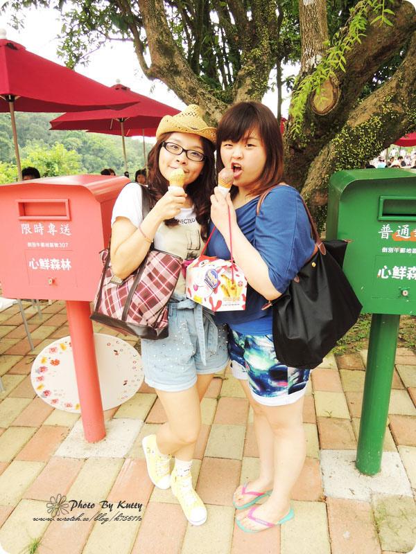 2013-7-20芎林心鮮森林_三姊妹 (15).jpg