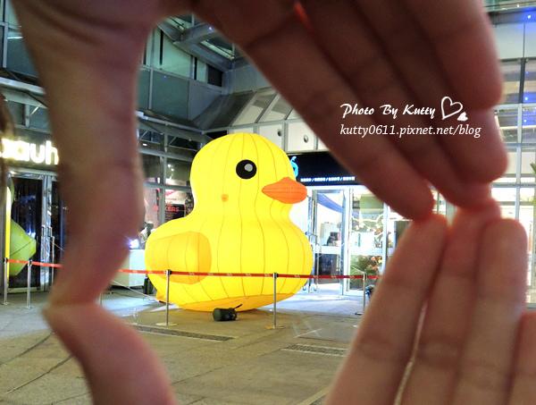 2013-10-19巨城黃色小鴨.jpg