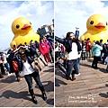 2014-1-19基隆黃小鴨 (6).jpg