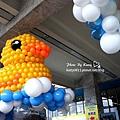 2014-1-19基隆黃小鴨 (17).jpg