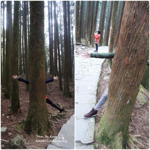 2014-1-31~2-1阿里山日出 (24).jpg
