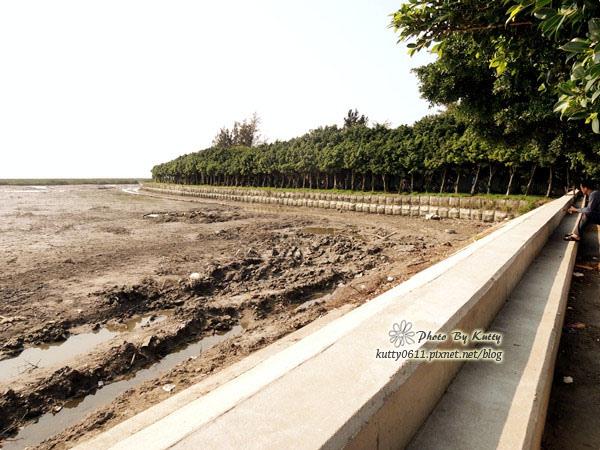 2014-4-5南寮17公里腳踏車 (9).jpg