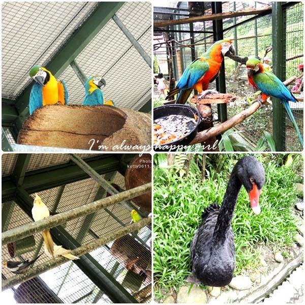 2014-5-30森林鳥花園_大娘 (9).jpg