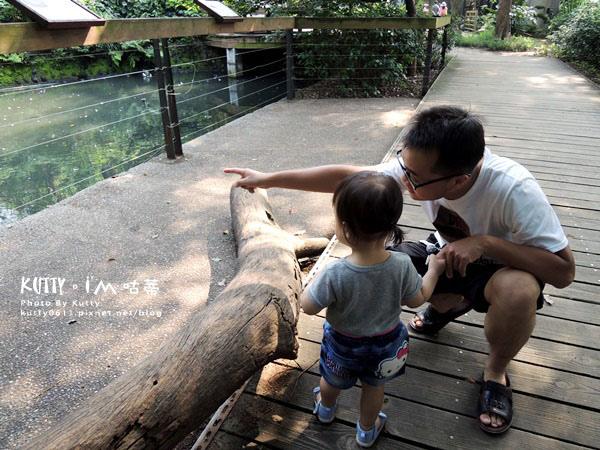 2016-5-2動物園 (7).jpg