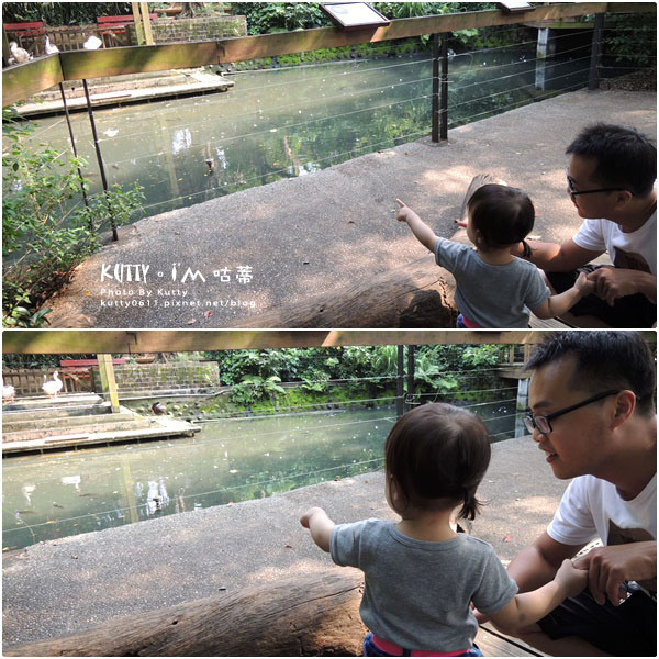 2016-5-2動物園 (8).jpg