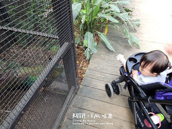 2016-5-2動物園 (9).jpg