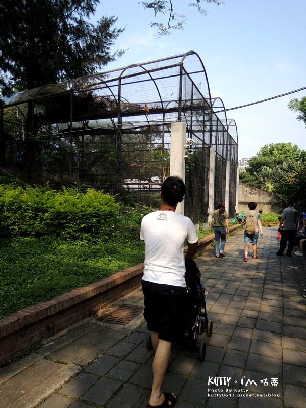 2016-5-2動物園 (10).jpg