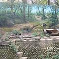 2016-5-2動物園 (14).jpg