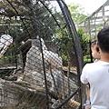 2016-5-2動物園 (15).jpg
