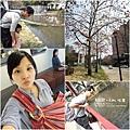 2017-4-4好玩藝兒 (20).jpg