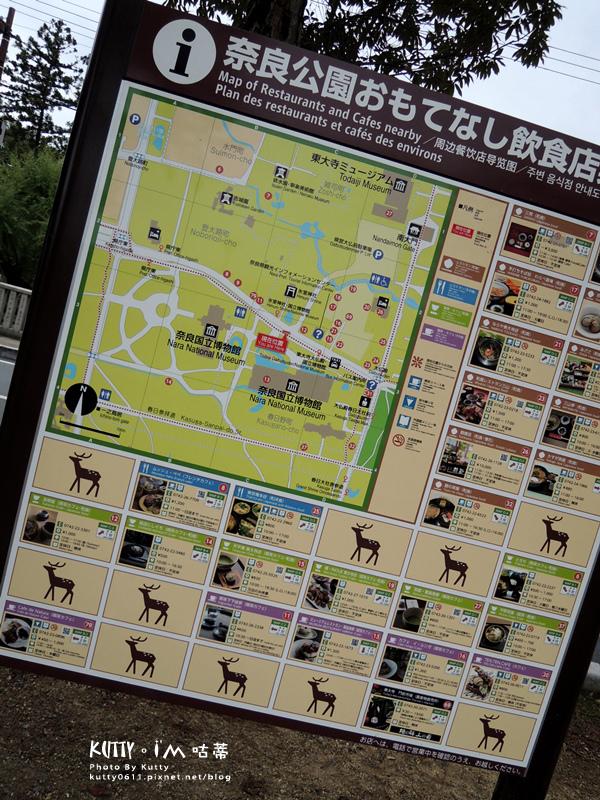 4奈良餵鹿 (22).jpg