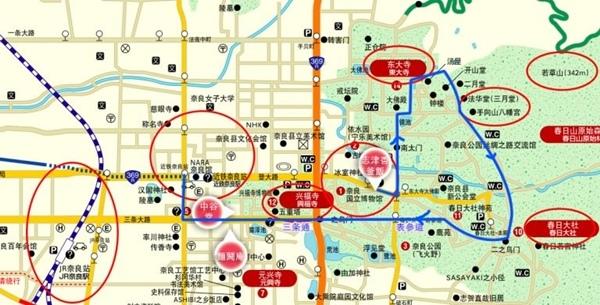 4奈良餵鹿 (33).jpg