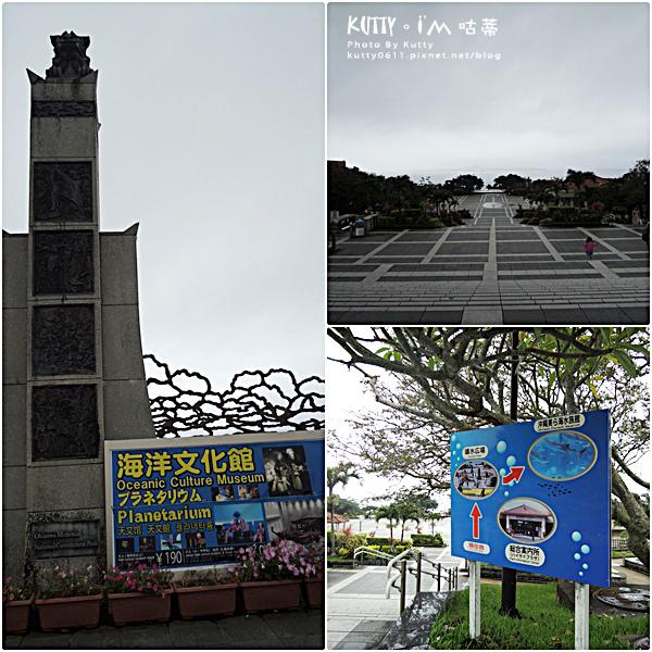4沖繩海洋博公園-美麗海水族館-海豚劇場 (2).jpg