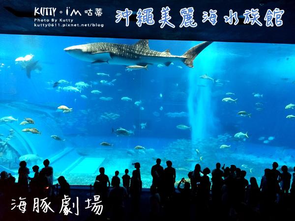 4沖繩海洋博公園-美麗海水族館-海豚劇場 (1).jpg