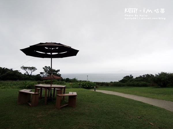 4沖繩海洋博公園-美麗海水族館-海豚劇場 (6).jpg