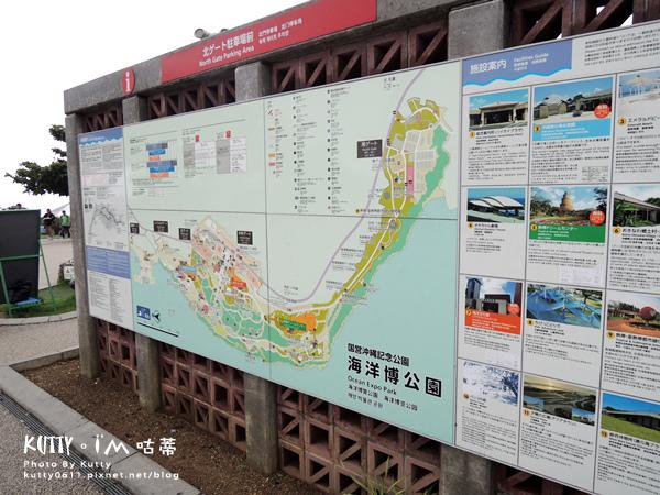 4沖繩海洋博公園-美麗海水族館-海豚劇場 (4).jpg