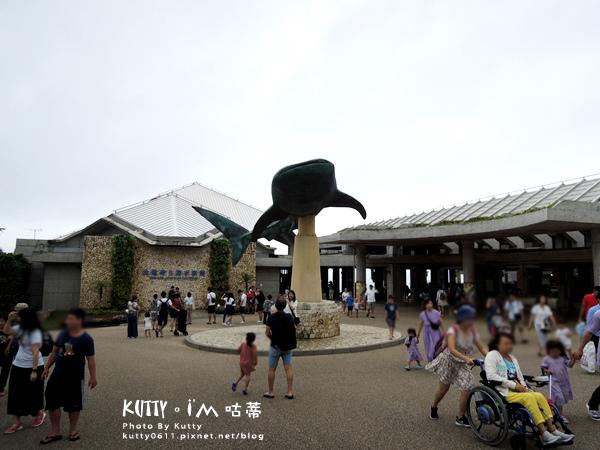 4沖繩海洋博公園-美麗海水族館-海豚劇場 (7).jpg