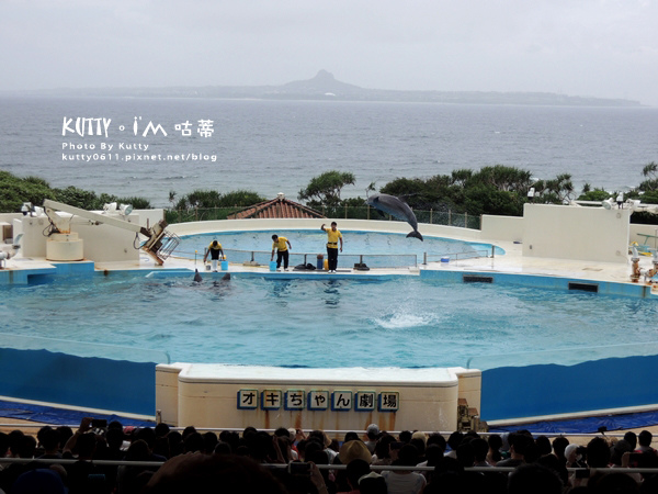 4沖繩海洋博公園-美麗海水族館-海豚劇場 (27).jpg