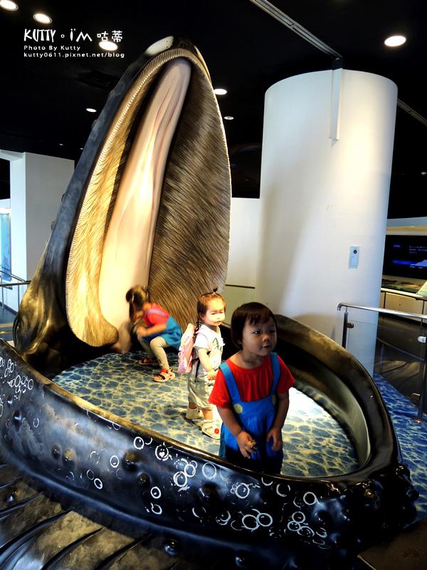 4沖繩海洋博公園-美麗海水族館-海豚劇場 (22).jpg