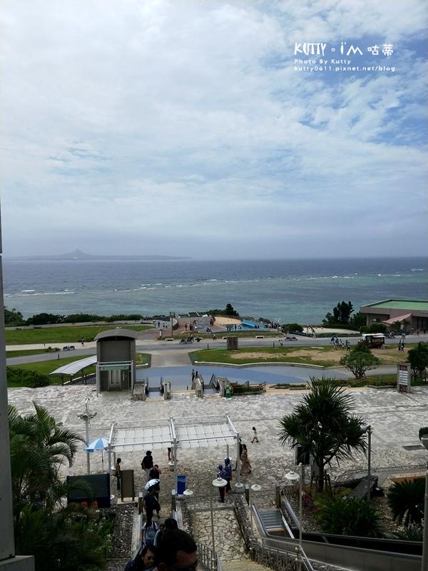 4沖繩海洋博公園-美麗海水族館-海豚劇場 (29).jpg