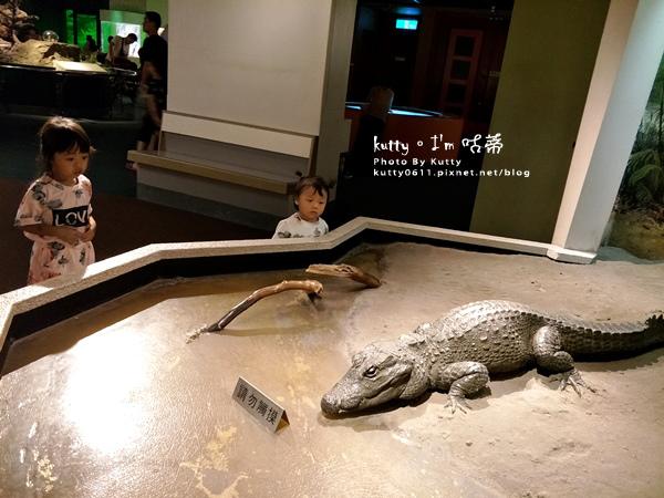 2019-8-3台中自然科學博物館 (4).jpg