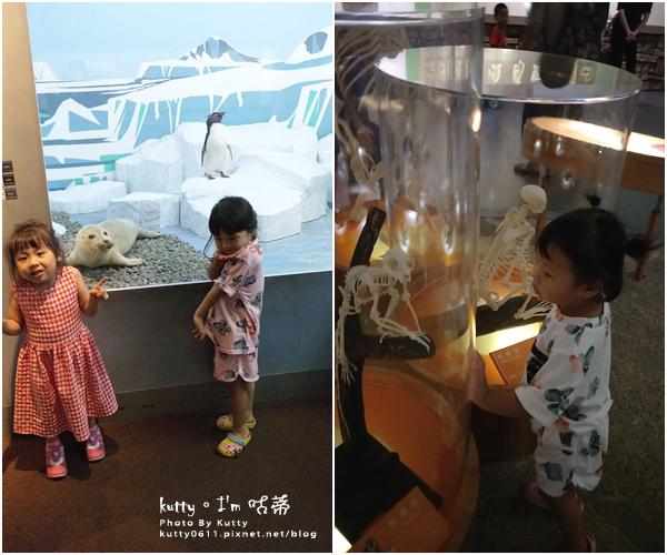 2019-8-3台中自然科學博物館 (12).jpg