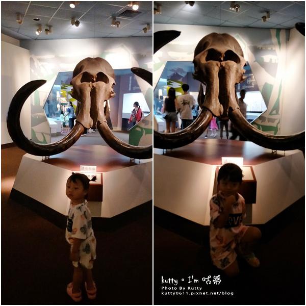 2019-8-3台中自然科學博物館 (11).jpg