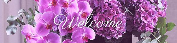 Welcome-Hybrid-The-Flower-Company-Ltd.jpg