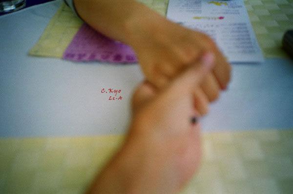 2009薰衣草森林