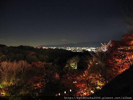 清水寺夜楓-3.jpg