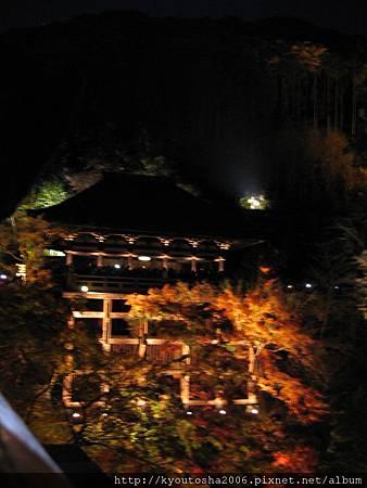 清水舞台之夜景.jpg