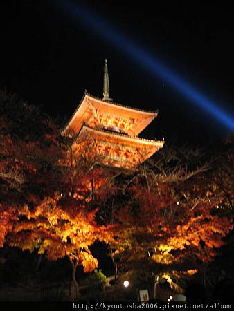 清水寺夜楓-4.jpg