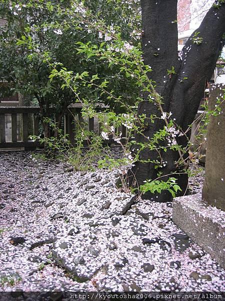 京都太極殿遺址