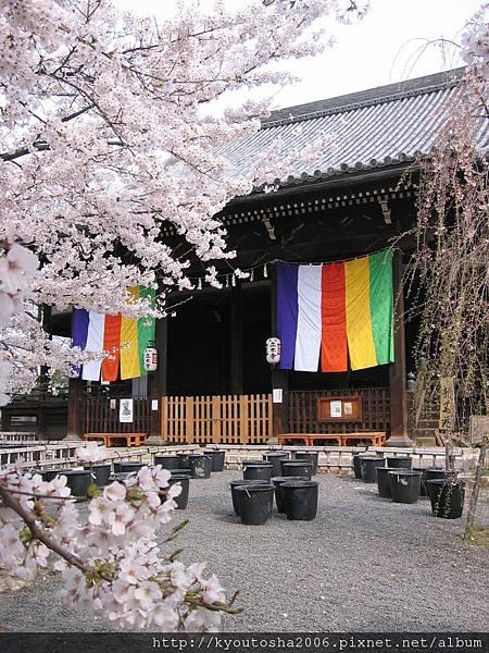 京都立本寺-2