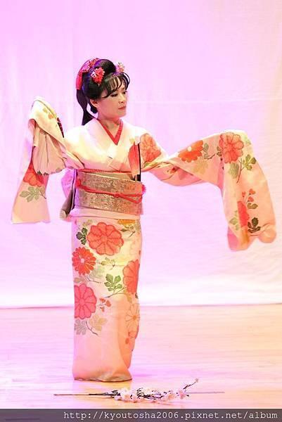 櫻花櫻花-2