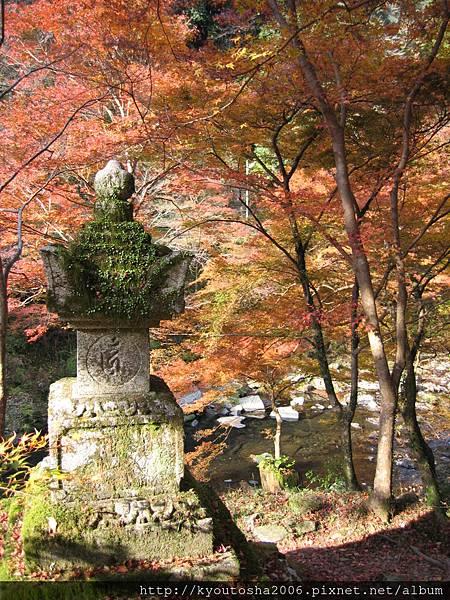 京都高雄-32.jpg