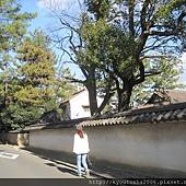 kyoto-201012 404.jpg