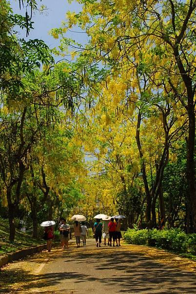 台南市政府觀光旅遊局提供02