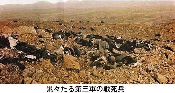 1904日俄戰爭日本第3集團軍攻打203高地死傷慘狀