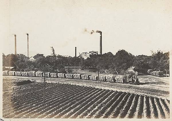 Light_railway_of_sugar_industry_in_Takao