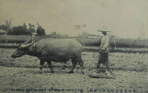 「臺灣農夫‧穿越時空的農業記錄」館藏特展帶領觀眾穿越時空,看到臺灣農業百年來的發展、記錄與變遷。--臺史博提供