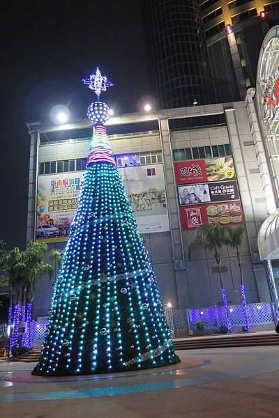 南遠:聖誕樹
