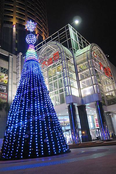 南遠:聖誕樹1