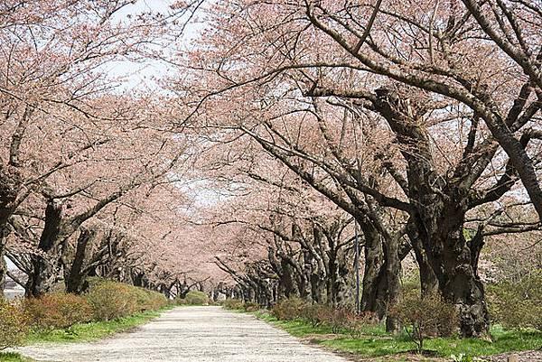 640px-Tenshochi_Park