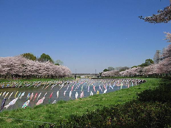 640px-Tatebayashi_Tsuruuda_River_1