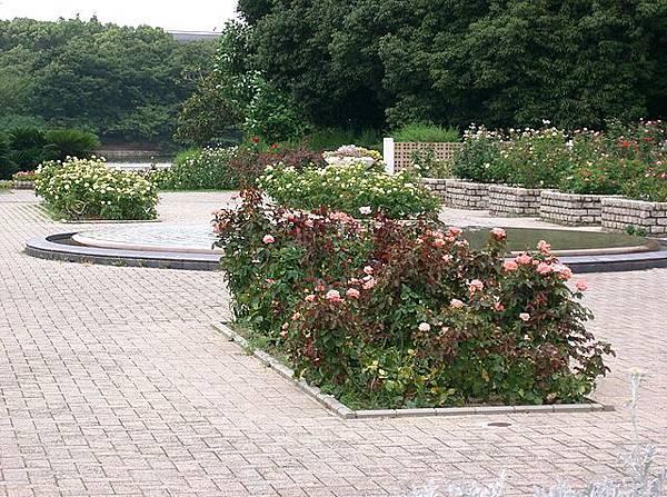 640px-Nagai_Botanical_Garden1