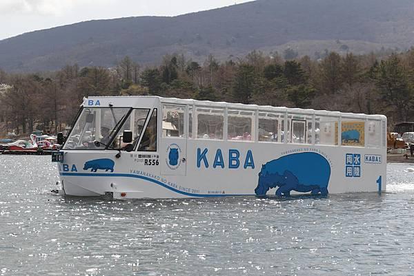 河馬水陸兩用巴士