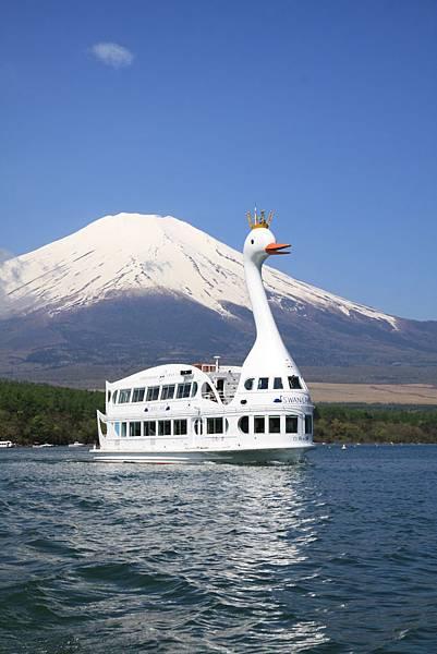 白鳥湖天鵝船