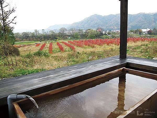 緑風荘亀麿の足湯