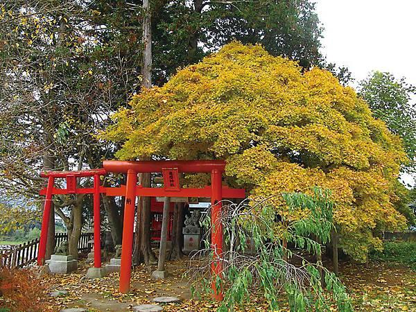 緑風荘 亀麿神社2